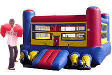 (B) Boxing Ring And Gloves